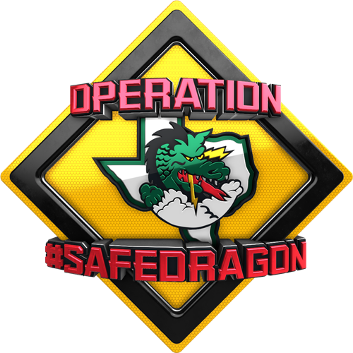 safe dragon logo